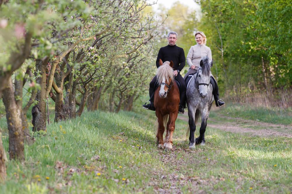 zemes_diena_izjade_ar_zirgu