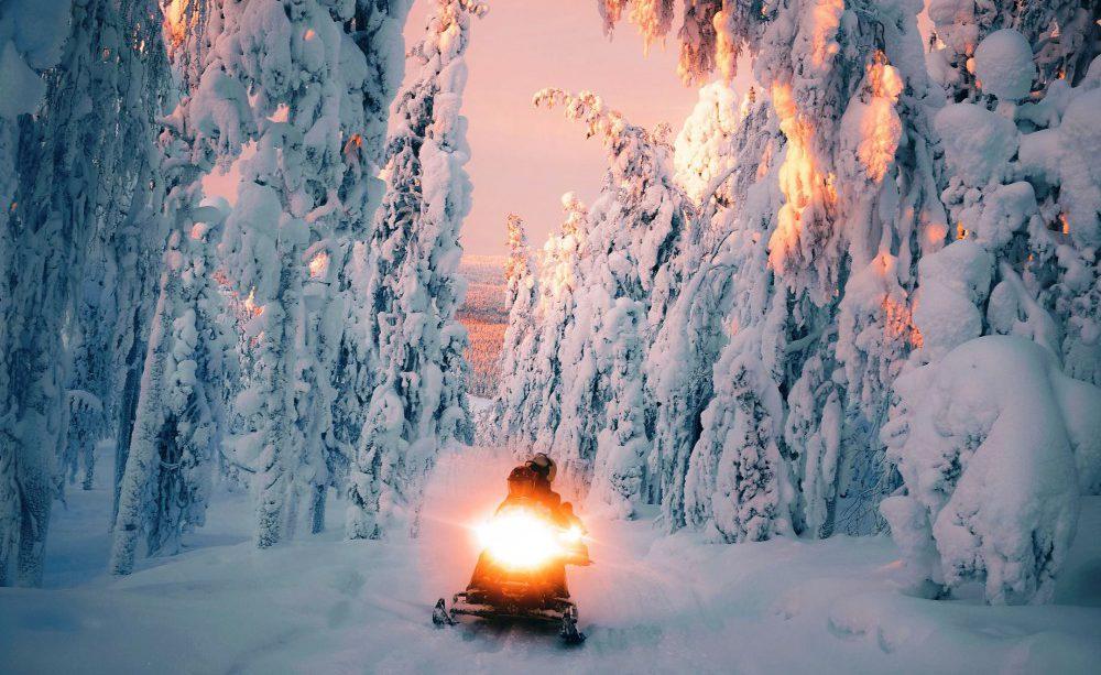 v_lesu_na_snegohode